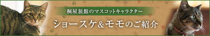 桐屋旅館のマスコットキャラクター「ショースケ&モモのご紹介」